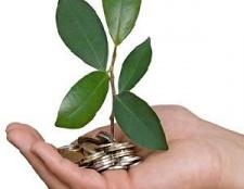 Що таке економічна і бухгалтерська прибуток?