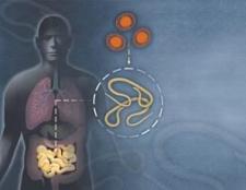 Що за хвороба така - аскаридоз? Симптоми, причини і діагностика