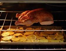 Курча в духовці: рецепти. Курча тютюну в духовці