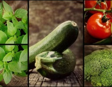 День працівника сільського господарства: дати, ідеї для сценарію