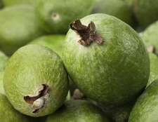Фейхоа: корисні властивості, калорійність. Як правильно їсти фейхоа
