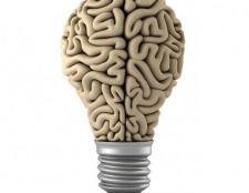 Де знаходиться і які функції виконує передній мозок?