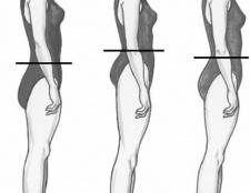 Ідеальні пропорції тіла людини