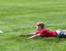 Як відіпрати траву з одягу? Ніж відіпрати плями від трави?