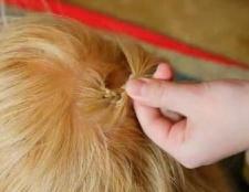 Як заплести косу навколо голови? Види і покрокові інструкції