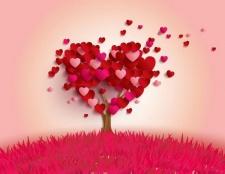 Яка буває любов: визначення. Який буває справжня любов?
