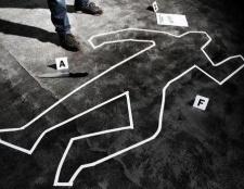 Яка застосовується стаття за вбивство людини з особливою жорстокістю, в стані афекту, через необережність, ножем, сокирою? Який термін (ук рф)?