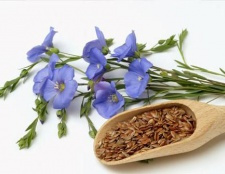 Лляне насіння: користь і шкода. Як приймати лляне насіння