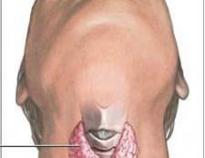 Чому виникає гіпофункція щитовидної залози?