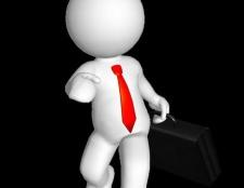 Принципи трудового права - основоположні ідеї галузі
