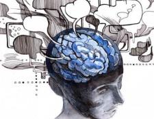 Властивості сприйняття в психології. Властивості відчуття і сприйняття