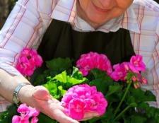Влаштовуємо свято бабусі: привітання з 65-річчям жінці