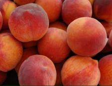 Варення з персиків: рецепт. Як варити варення з персиків