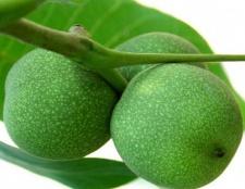 Варення із зелених волоських горіхів. Рецепт приготування